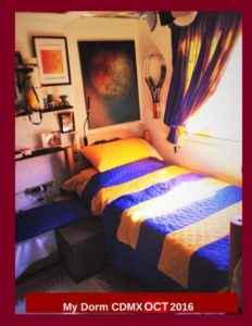 Read more about the article My Dorm CDMX